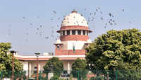 Disqualified Karnataka MLAs can contest elections: SC after upholding speaker's decision