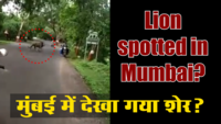 Fake Bole Kauwa Kaate: Ep.88 - Was a lion spotted crossing the road in Mumbai?