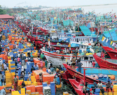 Karnataka cabinet to discuss fish import issue with Goa government; outfits block fish-laden trucks in Karwar