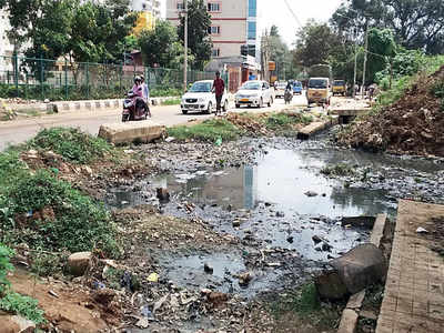 Residents complain about sewage water entering into Rachenahalli Lake, just two years after revival