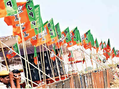 BJP campaign targets 100 Muslim votes in UP booths