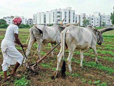Amreli farmer commits suicide on Diwali