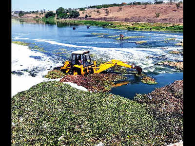Kharadi residents pool in resources to remove hyacinth
