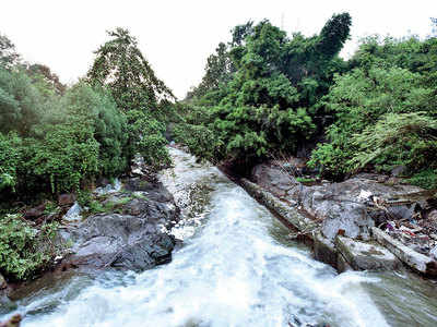 Encroachments on Ambil Odha led to Sept flooding: PMC