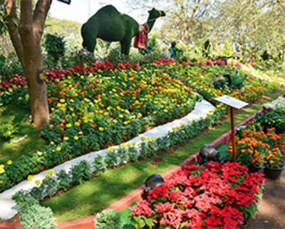 Thane turns into a charming bloom town