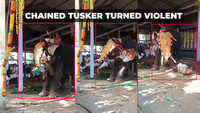 Viral video: Man falls off elephant at Kerala temple
