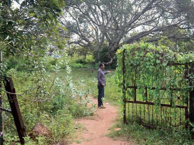 Bangalore Development Authority leads citizens up the garden path