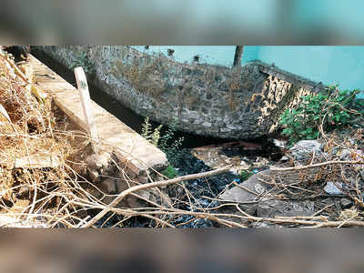 Dombivali industrial estate continues to pollute Ulhas river