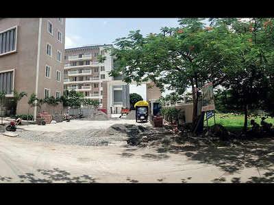 Strays poisoned, builder says 'sorry'