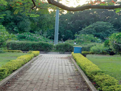 Bengaluru badly needs a tall, dense hedge; here's why