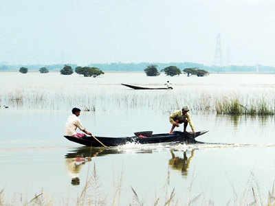 Experts press for wetlands conservation