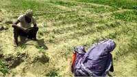 Farmers in UP's Moradabad heap praise on agriculture reform bills