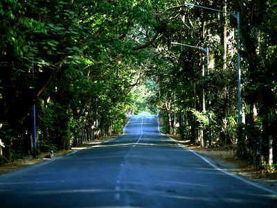 State to categorise 600 acres of Aarey Colony as forest