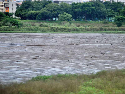 Lakhs for lakes a no-show