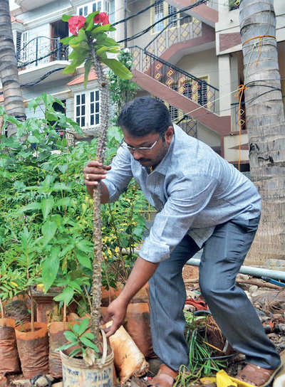 Cabbie swaps booze for greening the city