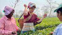 Watch: Priyanka Gandhi learns intricacies of tea leaf plucking