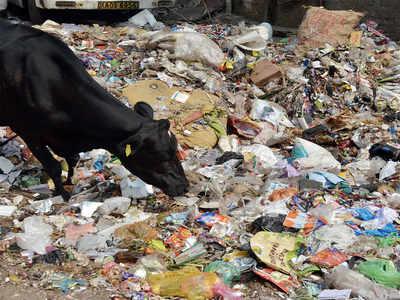 Bengaluru janata had a smelly curfew day
