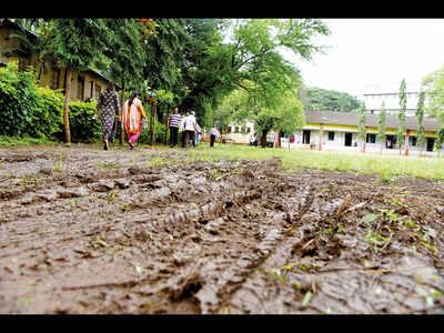 Moss-covered roads, broken planks make voting challenging