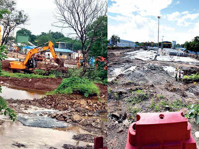 Felling trees for Metro work lands authorities in trouble