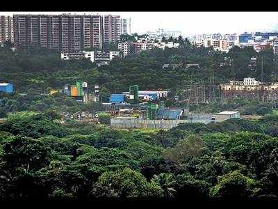 Aarey part of SGNP stand will help the green cause: NGOs