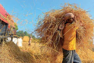 Bury the hay, don't let Bengaluru go the Delhi way: Govt tells farmers