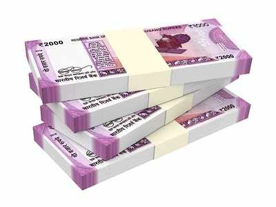 Fake notes seized by Pune city crime branch