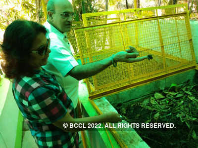 BMC requests residents to collect compost for farmers, Dia Mirza tweets out her support
