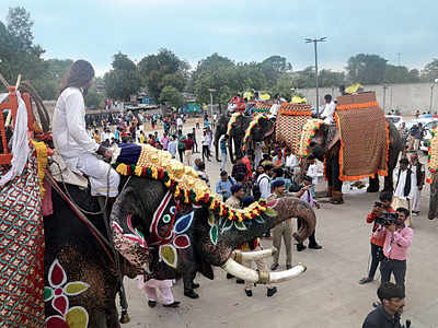 The Assam elephants won't be rathyatra's 'shaan' this year