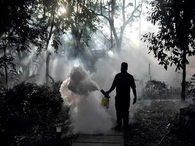 Rising dengue cases put health officials on alert