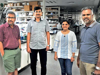 IISER scientists make drug carriers to kill breast cancer cells