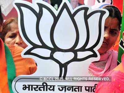 Won't fight Gujarat polls, but work for BJP: Minister Jayantibhai Kavadiya