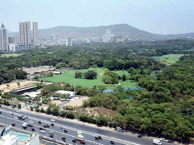 'Tree Authority's decision on Aarey trees nothing but fraud'
