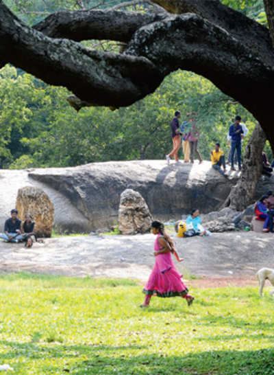 Walk in Cubbon Park turns traumatic for homemaker