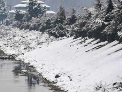 Eight killed in two avalanches in Kashmir