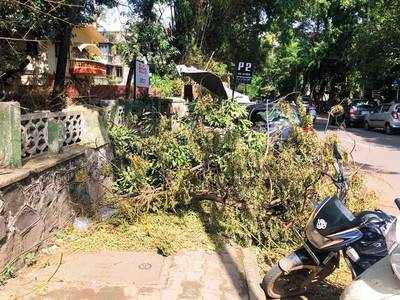 Shredded branches on footpath irk pedestrians