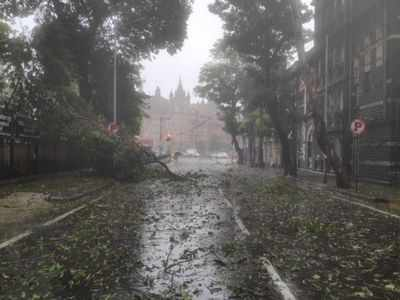 Mumbai latest weather update: Intense to very intense rainfall with strong winds likely in Mumbai over next 3 hours, warns IMD