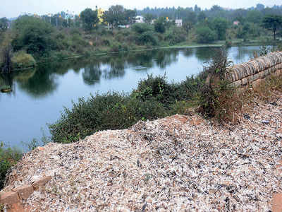 Trash-passers should be prosecuted to save lake