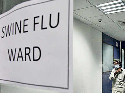 HC takes govt to task over rising swine flu deaths