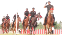 Chennai: Indian Army cadets showcase equestrian, gymnastics ahead of passing out parade