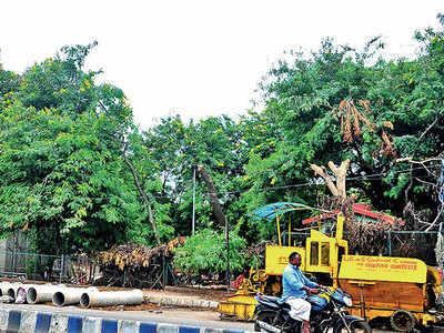 Big gate, no garden: PMC's renovation of Indraprastha