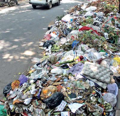 Karnataka High Court wants FIRs against Bengaluru's litterbugs