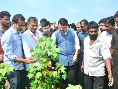 Chief Minister Devendra Fadnavis reviews crop loss in rain-hit Akola, assures help to farmers