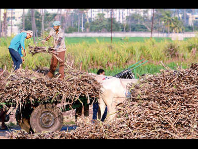 Why farmers voted for BJP