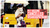 World Zoonoses Day: Pet vaccine camps cancelled due to COVID-19