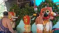 Deva Snana Purnima: Lord Jagannath and divine siblings bathed, dressed in elephant costumes in Odisha's Rourkela