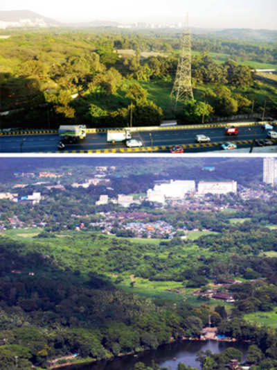 Greens win their second big battle for Aarey Colony