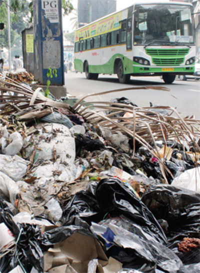 Garbage crisis triggers fear of dengue epidemic in city