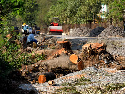 85 trees may be axed to make way for five stations of Metro 7