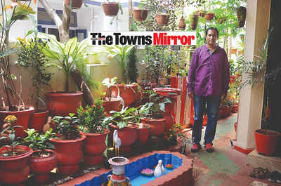 The Towns Mirror Special: Paradise found on Spencer Road