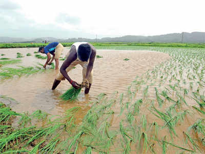 Farm loan waiver: The internet saves state Rs 9,000 cr